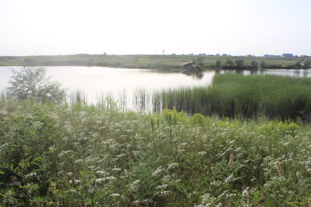 где порыбачить в рязанской области